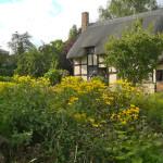 Anne Hathaway's Cottage & Gardens