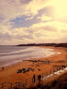 Can You Walk Dogs On Tynemouth Beach