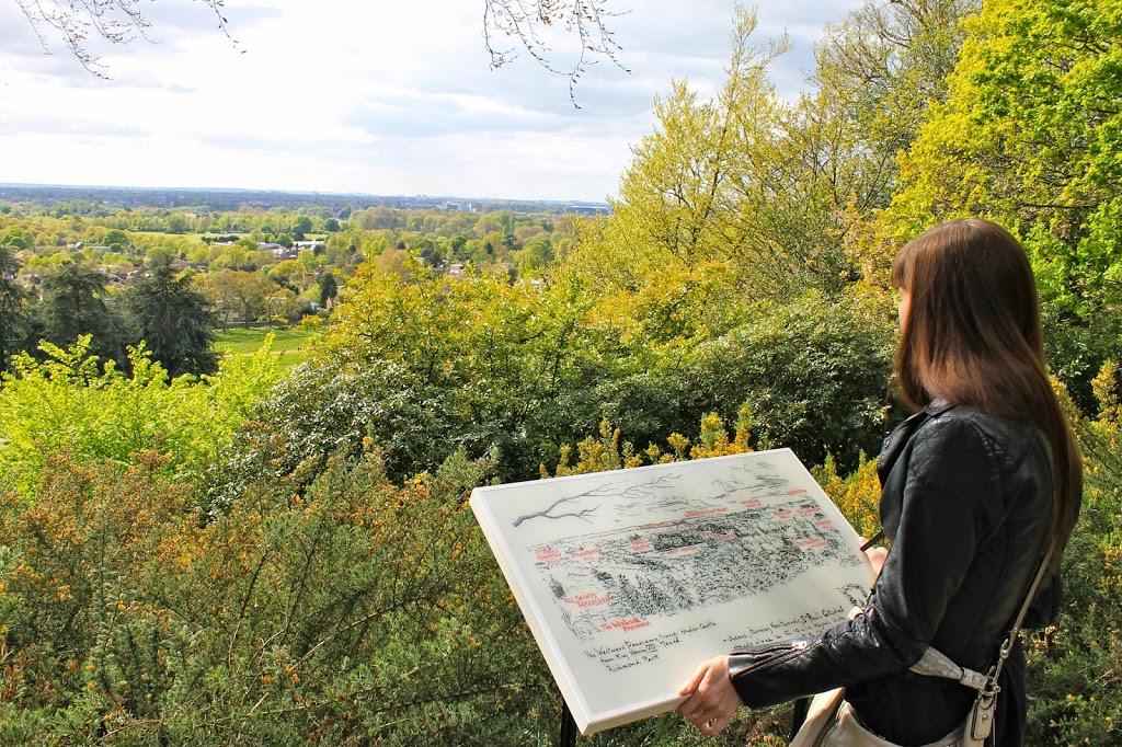 surveying london