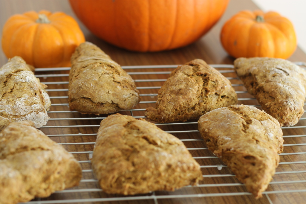 pumpkin scones cooling