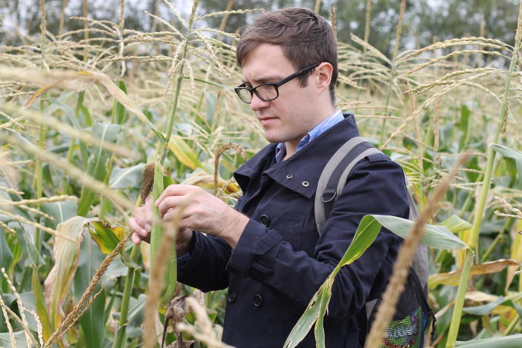 sam and corn
