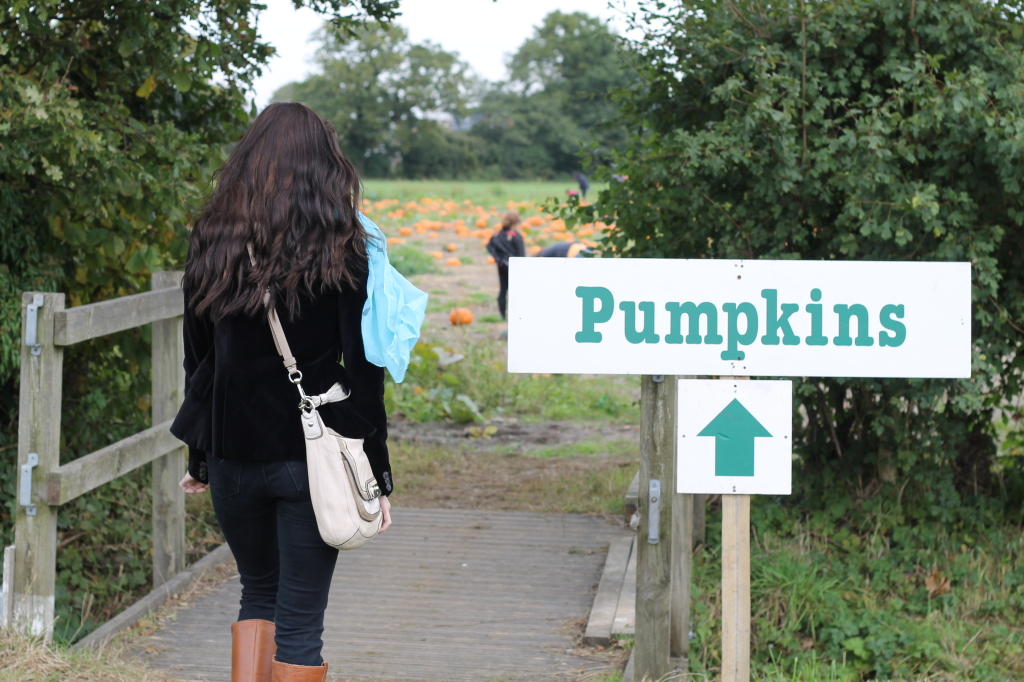 to the pumpkins