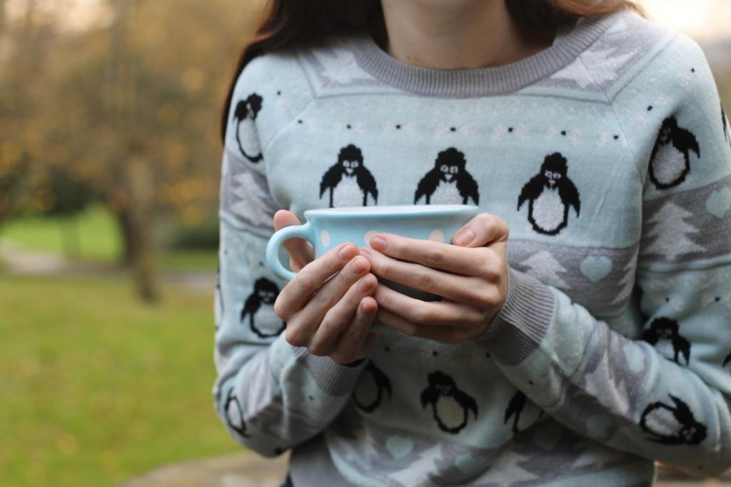 mug and penguins