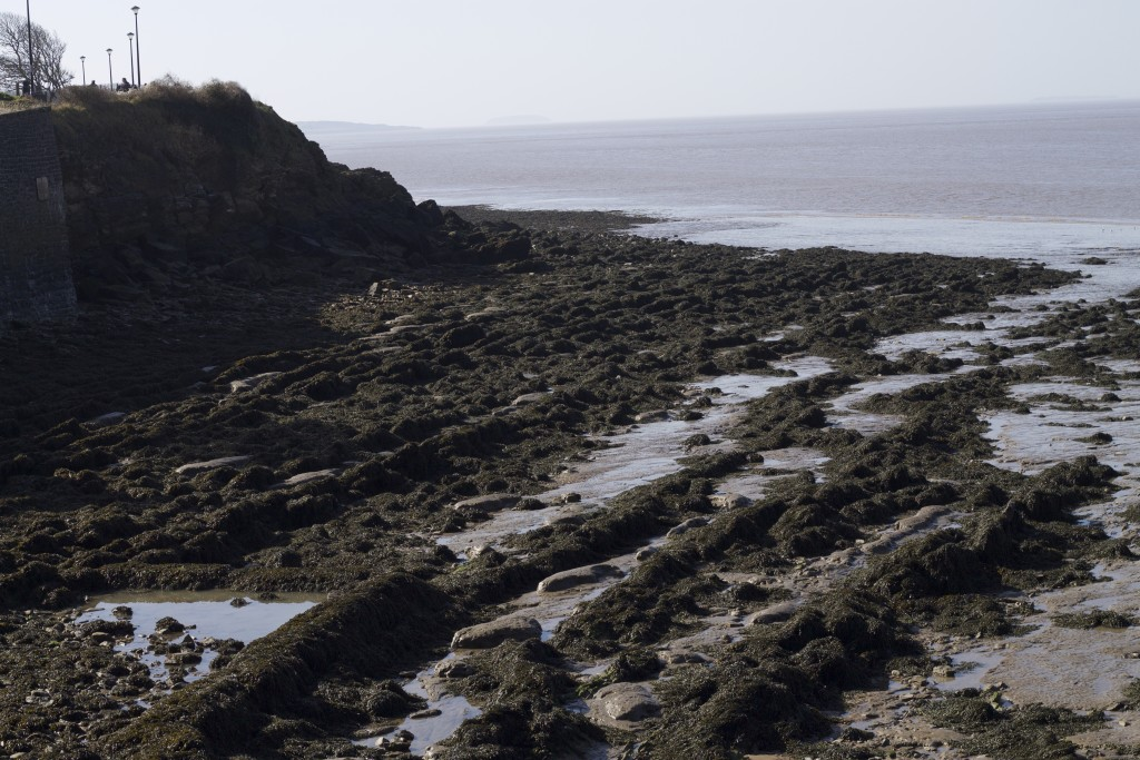 shore at clevedon