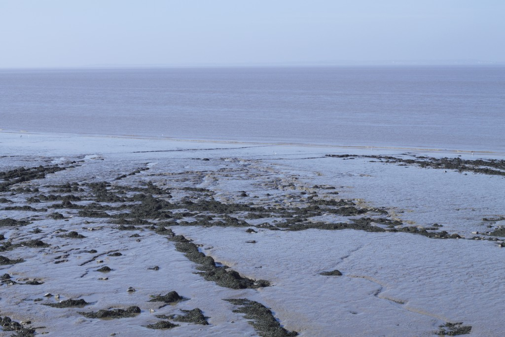 water at clevedon