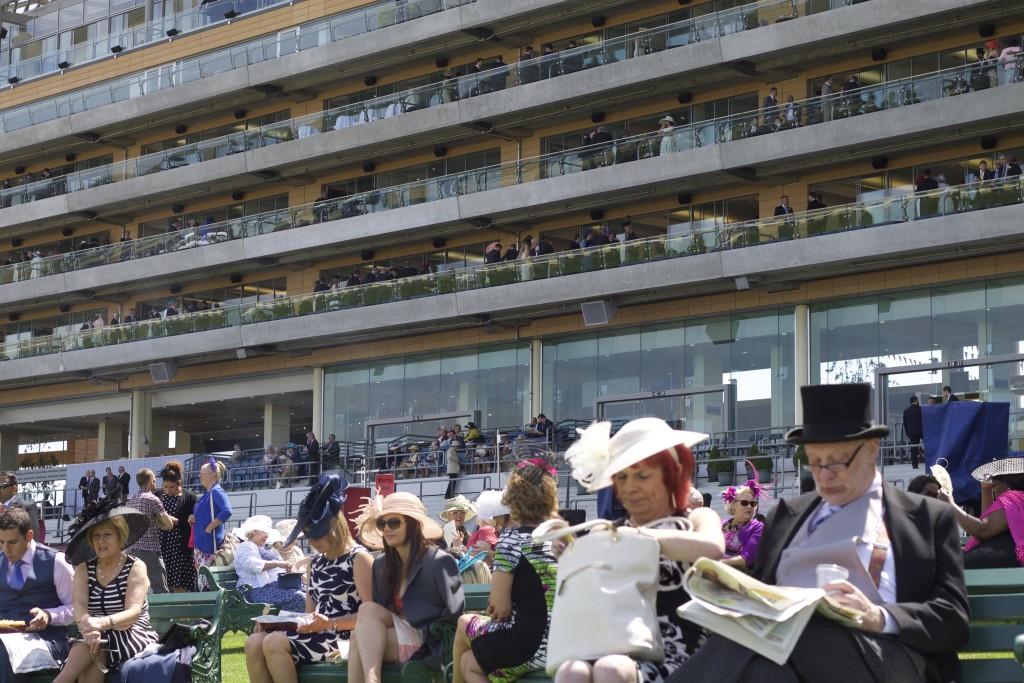 more grandstand