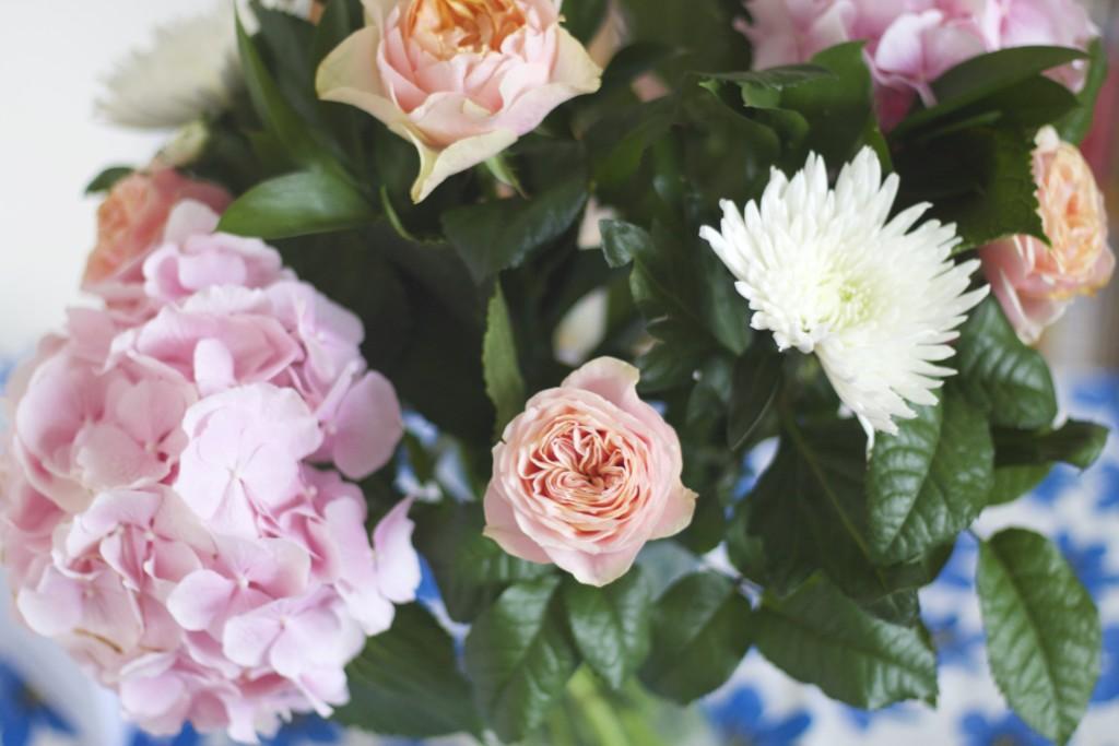 close up blooms