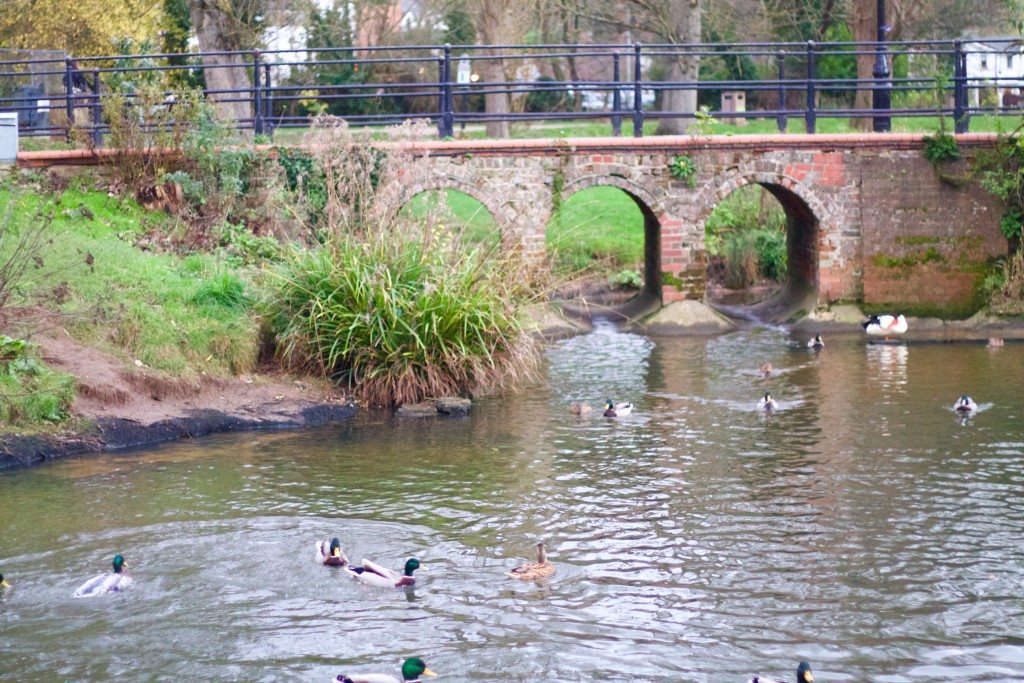 waterways of guildford
