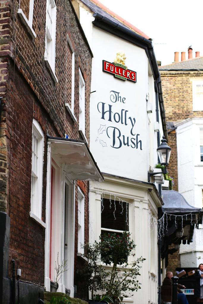 holy bush