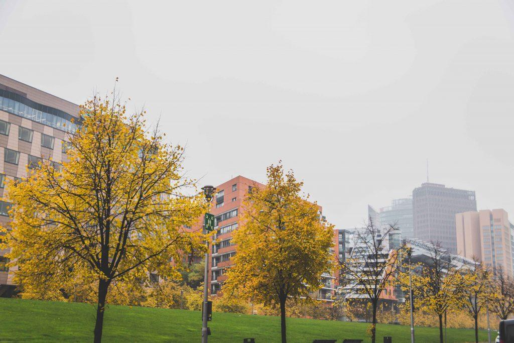 berlin-edits-63