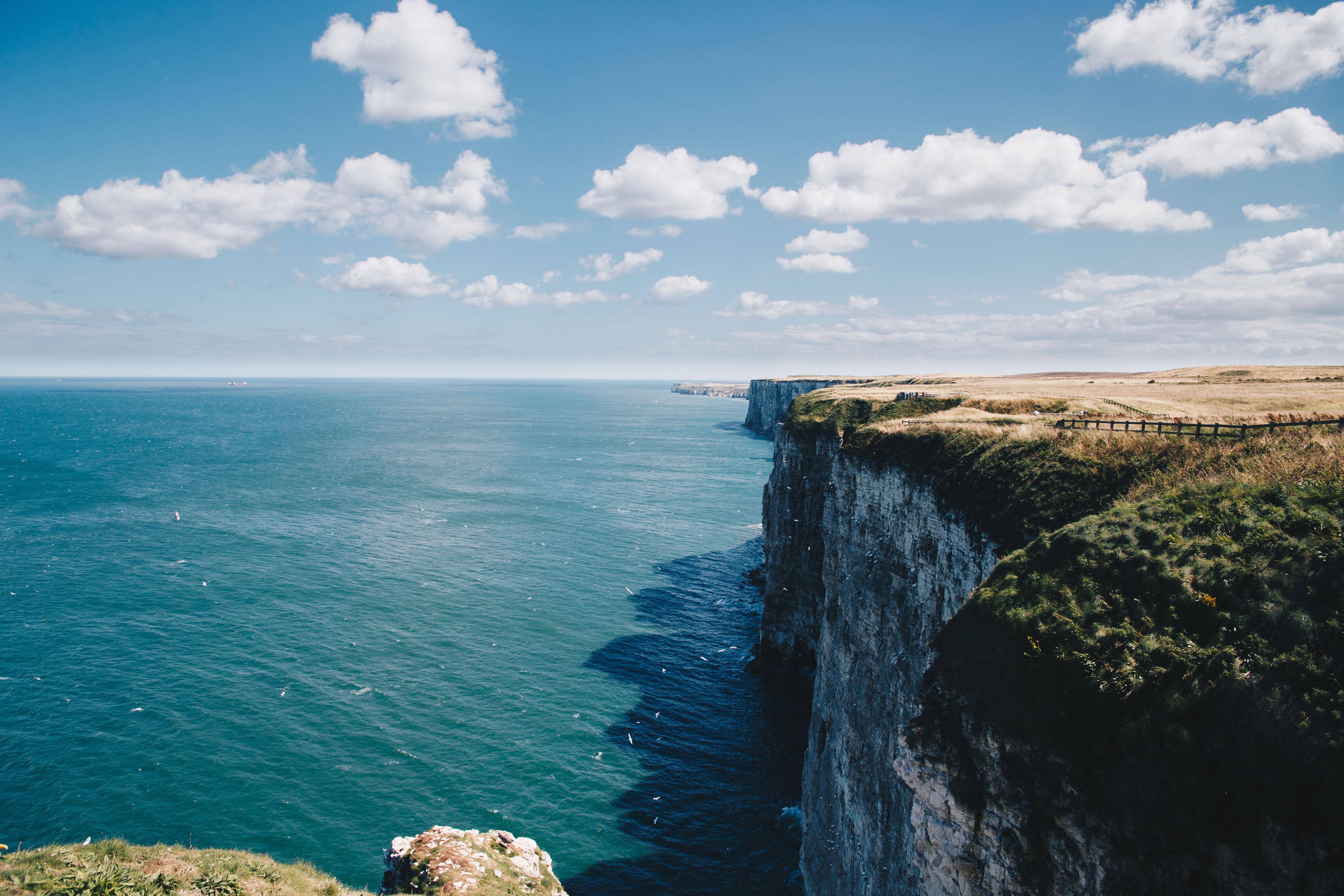 beautiful bempton cliffs