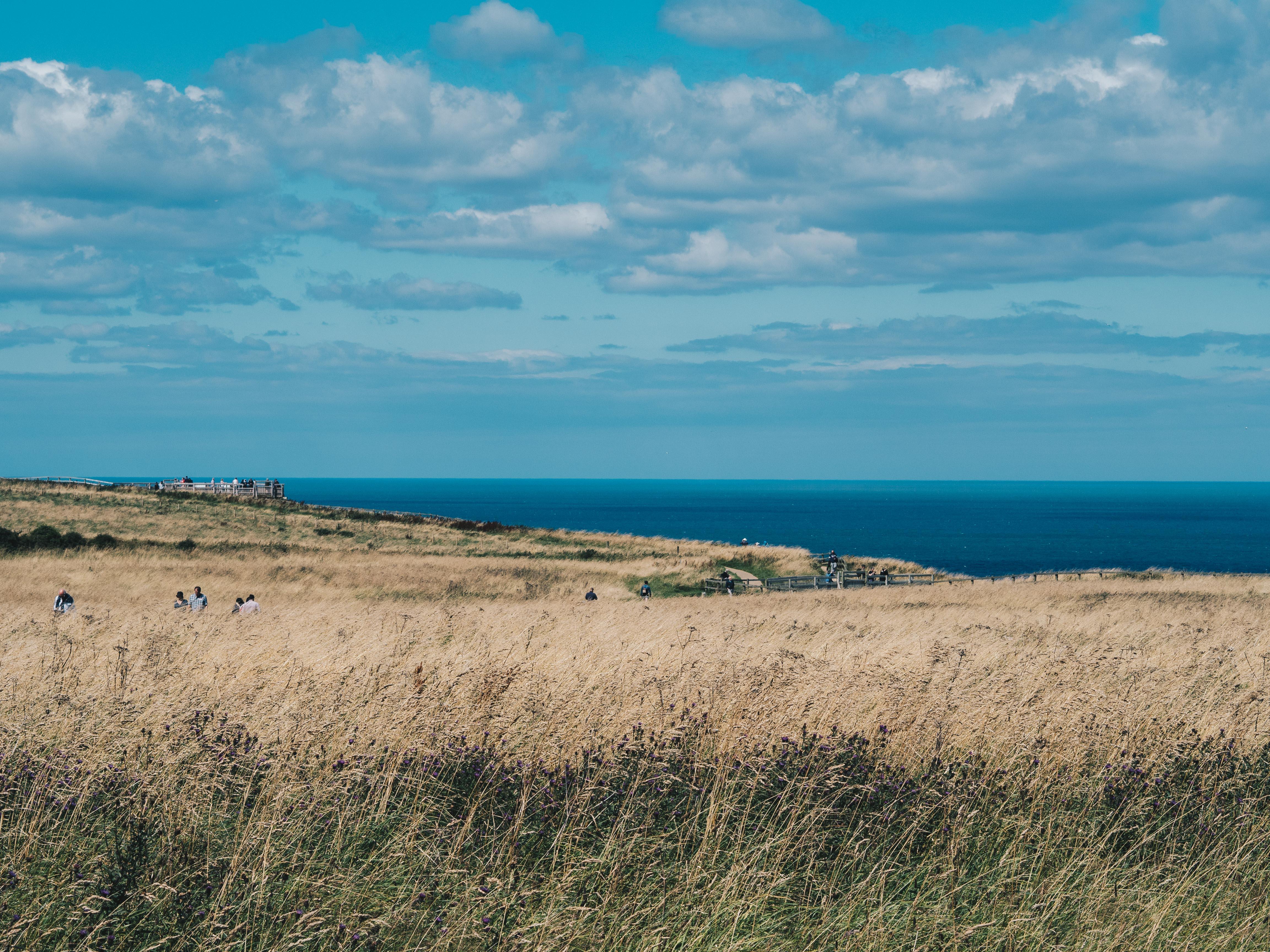 sky and sea bempton cliffs