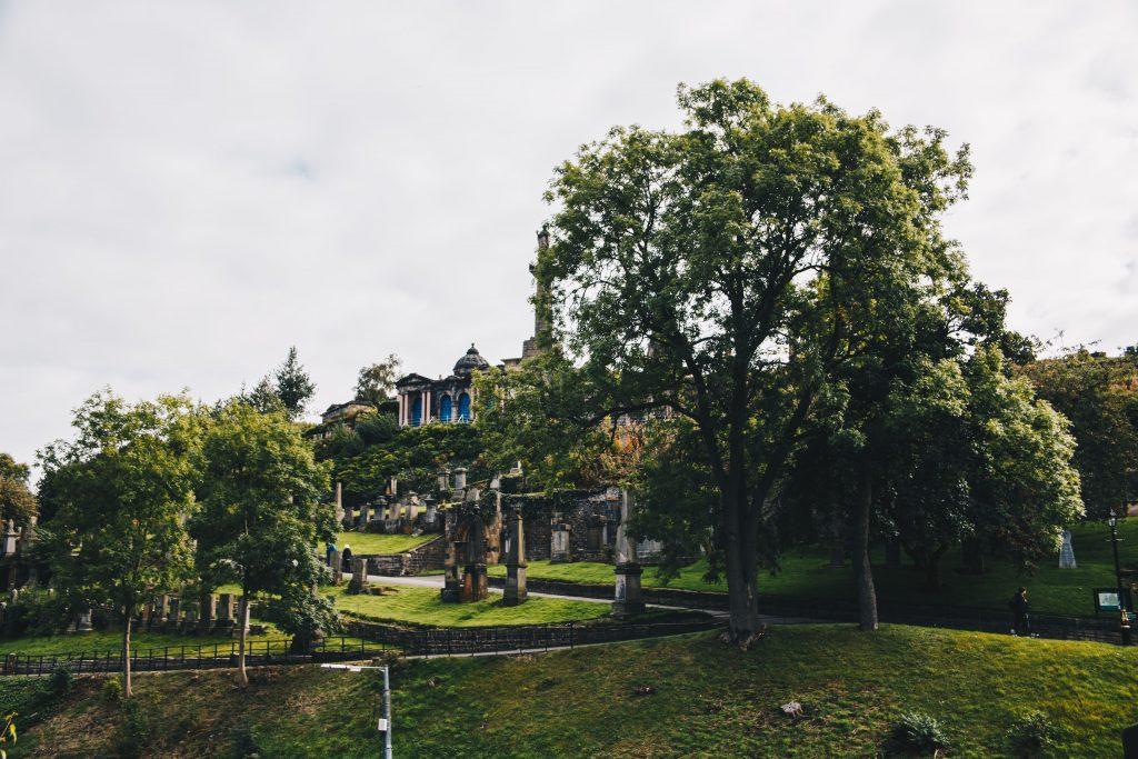 greenery in the Glasgow Necropolis