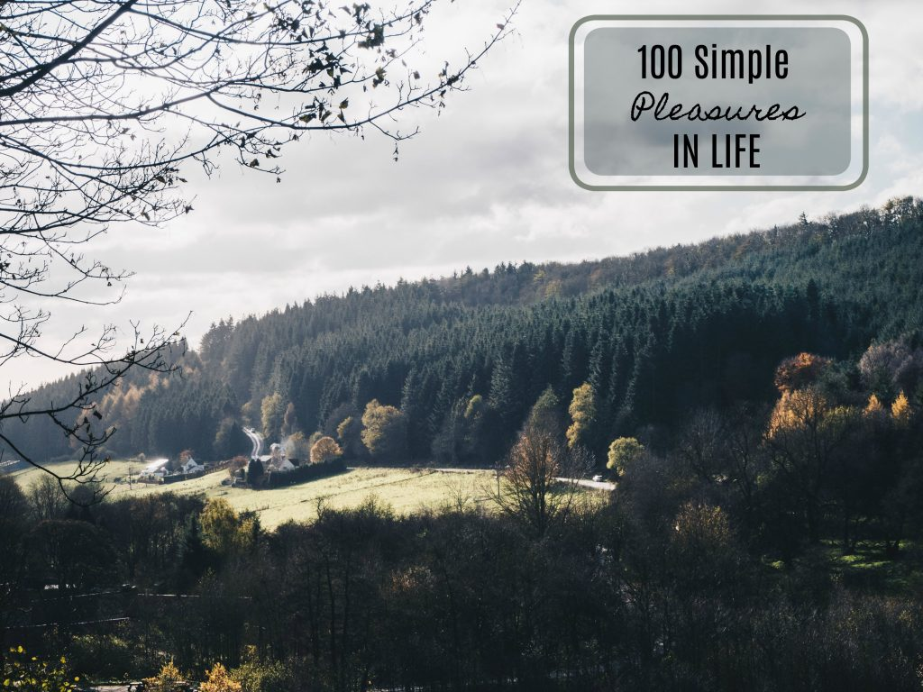 100 simple pleasures in life