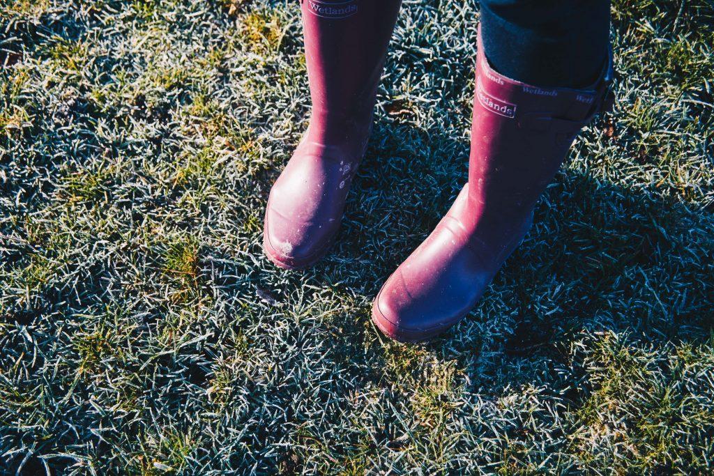 frozen ground and purple wellie boots