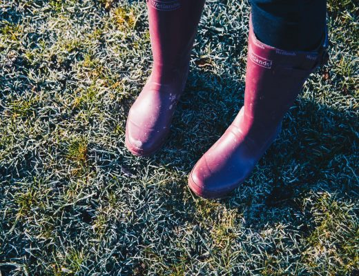 frozen ground and purple wellie boots