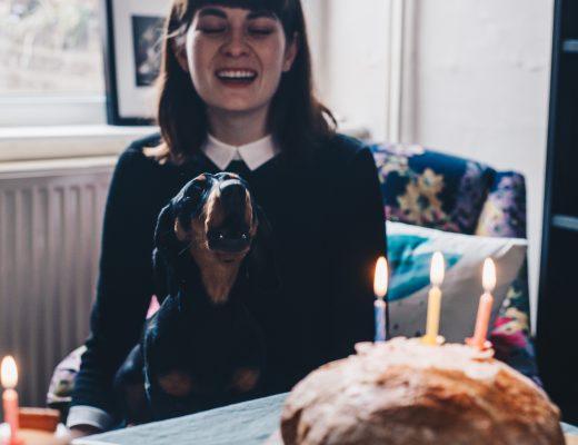 harold singing happy birthday